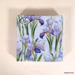 Blue Iris blue