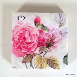 Tea Rose white