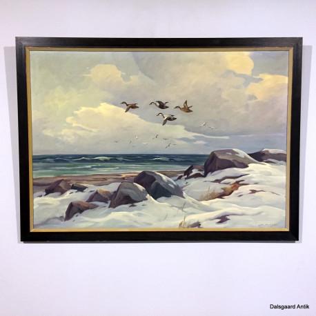 Flyvende ænder over klitter
