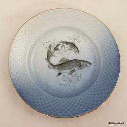 Fisketallerken - Ål
