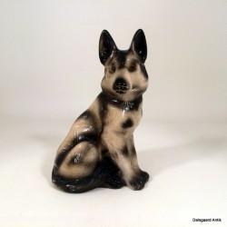 Shæferhund